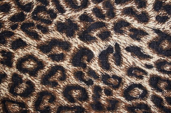 Osez le léopard!