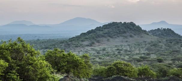 Passer un agréable moment avec safarivo